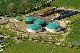 Biogas: uno dei sistemi più utilizzati in agricoltura per produrre energia rinnovabile!